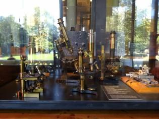 antique microscopes